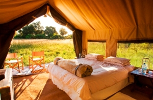 luxury-eco-resorts-03-g_www.forbestraveler.com_Savute Under Canvas, Botswana