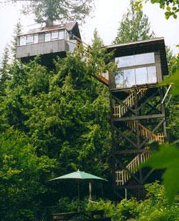 Cedar Creek Treehouse_WA_www.blogratestogo.com