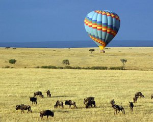 hot_air_balloon_masai marai_kenya