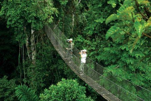 Inkaterra Peru_itra_canopy-walk