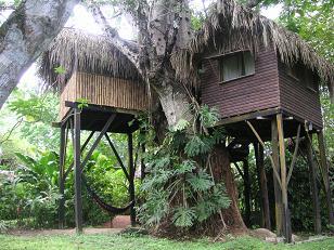 Parrot Nest Lodge_Tree House_Belize_www.successco.typepad.com