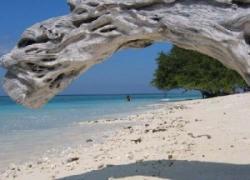 syadera.wordpress.com_17468-gili-trawangan-lombok-indonesia
