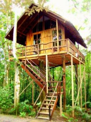 Tree House Hotel_Costa Rica_www.journeysadventures.today.com