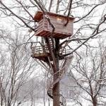 treehouse_thfoin_75605t
