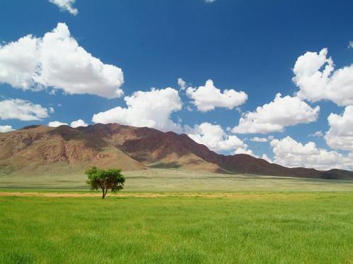 Wolvedans Namibia_phenomena01_1024x768