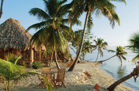 Copolla's Turtle Inn_Belize_belize_turtle2