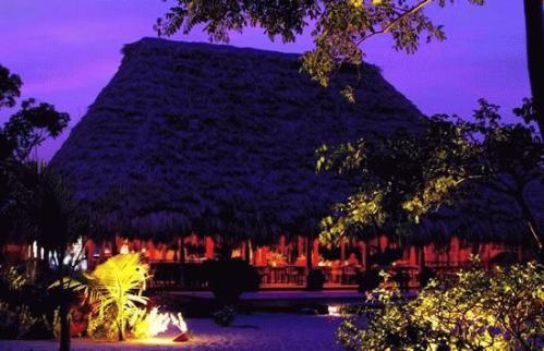 Copolla's Turtle Inn_Belize_turtle_inn_255