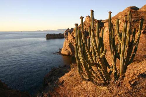 El Sanctuario Eco Retreat_BC_MX_Baja-JGI-04-161-web