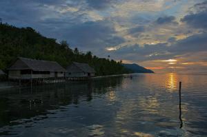 Kri Island_W Papua_photo_Carlo Ottaviano Casana_7452025-md