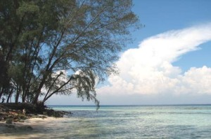 Panambungan Island_Makassar_S Sulawesi_sp13-a_11