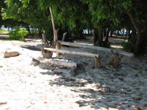 Panambungan Island_Makassar_S Sulawesi_sp13-b_9