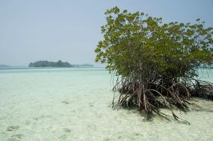 Pulau Macan_Jkt_1303534823_2db5861cd4