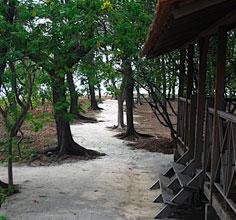 Pulau Macan_Jkt_3