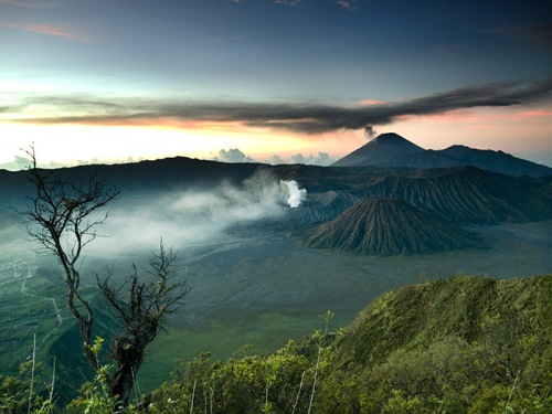 Magnificent Bromo. Photo: Ari Widodo