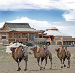 Three Camels-MONGOLIA-summer-travel-camping-slide-show_three-camels-lodge-outside_w609