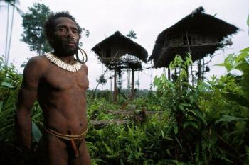 Tree Tribe of West Papua-INS-1