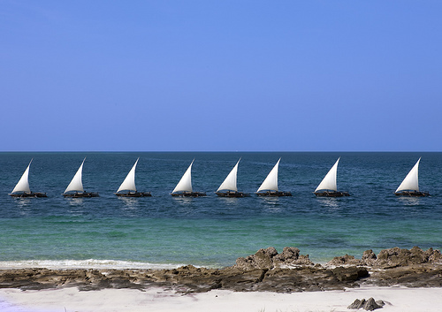 A line up of Dhows sailing in perfect sync, Tanzania. Photo: flickr member Eric Laffrogue