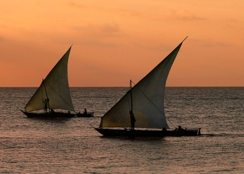 Dhows coming back home, Nungwi Village, Tanzania. Photo: flickr member id_germain