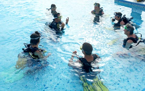 Fundu Lagoon-TANZANIA-Diving School