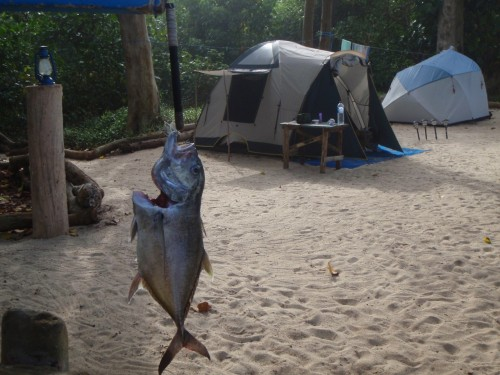 The Camp. Photo: Ulua Jungle Fishing Adventures